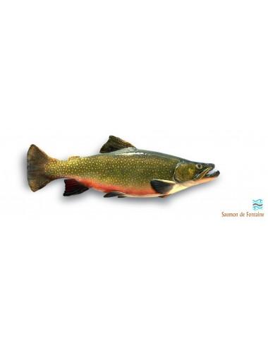 Vente de saumon de fontaine en ligne
